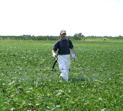 Former graduate student Nick Monnig makes a herbicide application to one of his research plots.