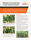 50737_3_TA_FactSheet_Waterhemp